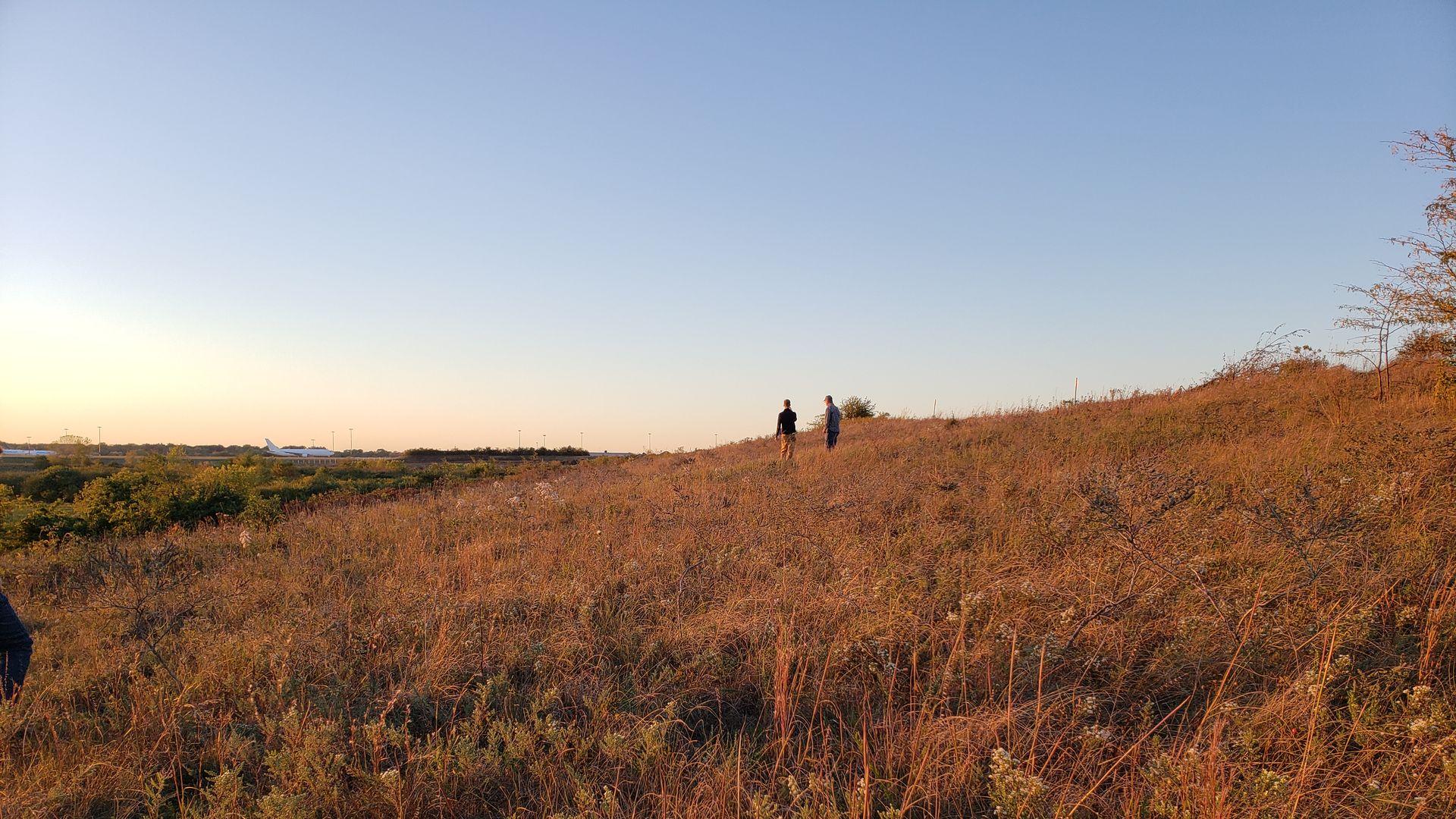 A prairie.