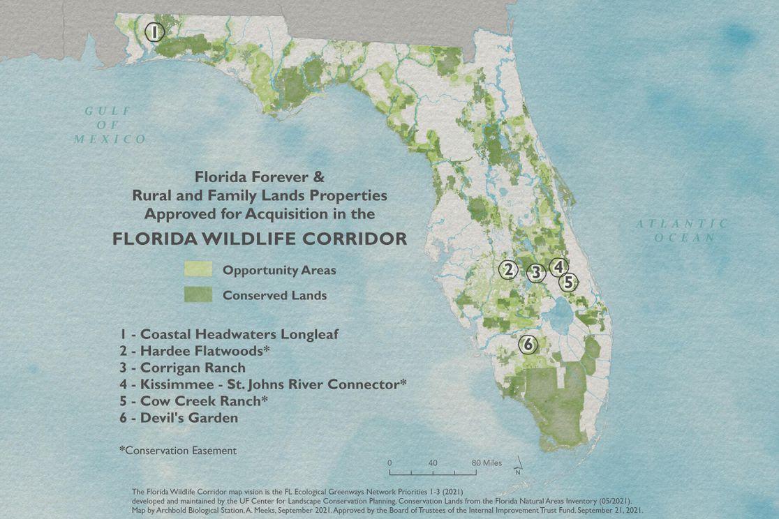 A map of the Florida Wildlife Corridor.