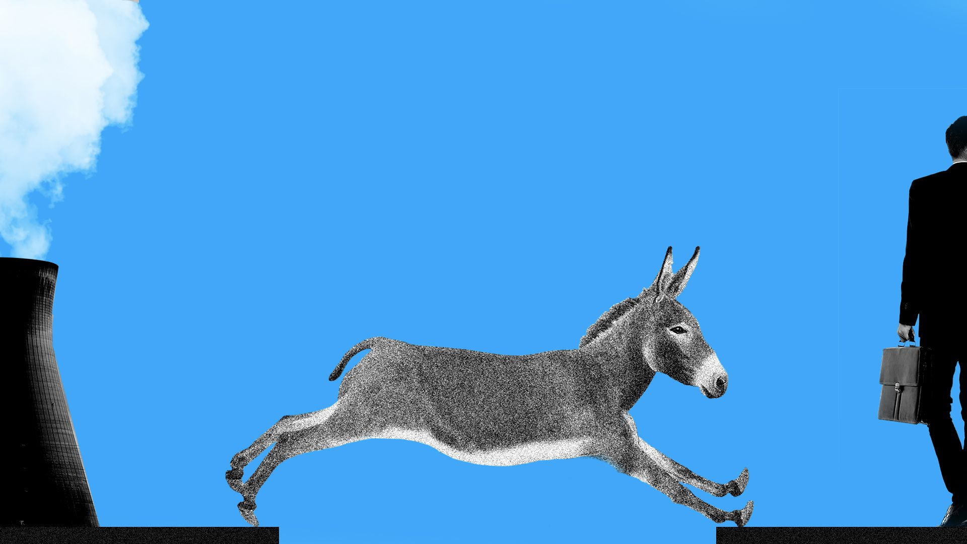 Donkey climate change