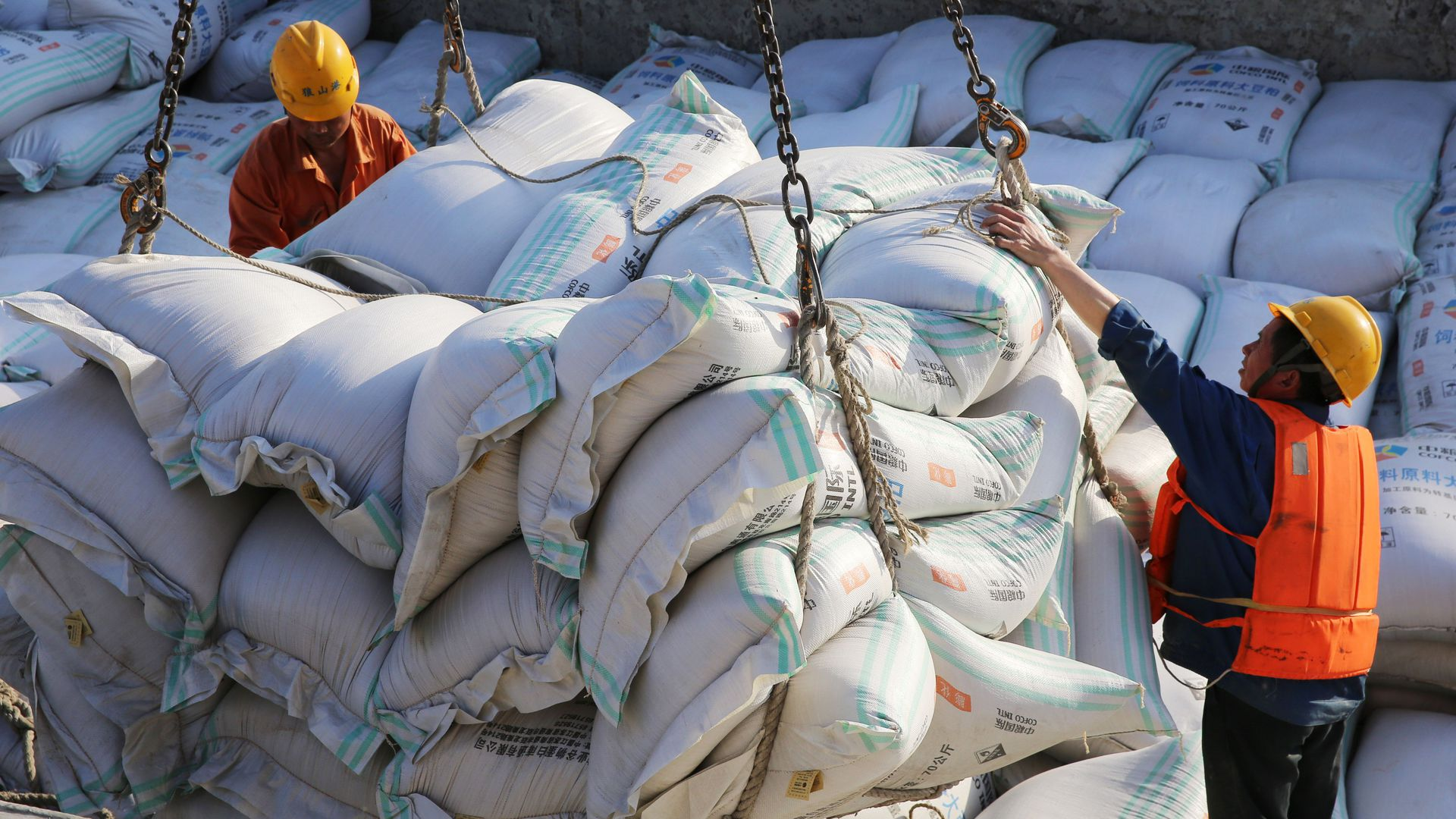 Workers moving soybean shipments