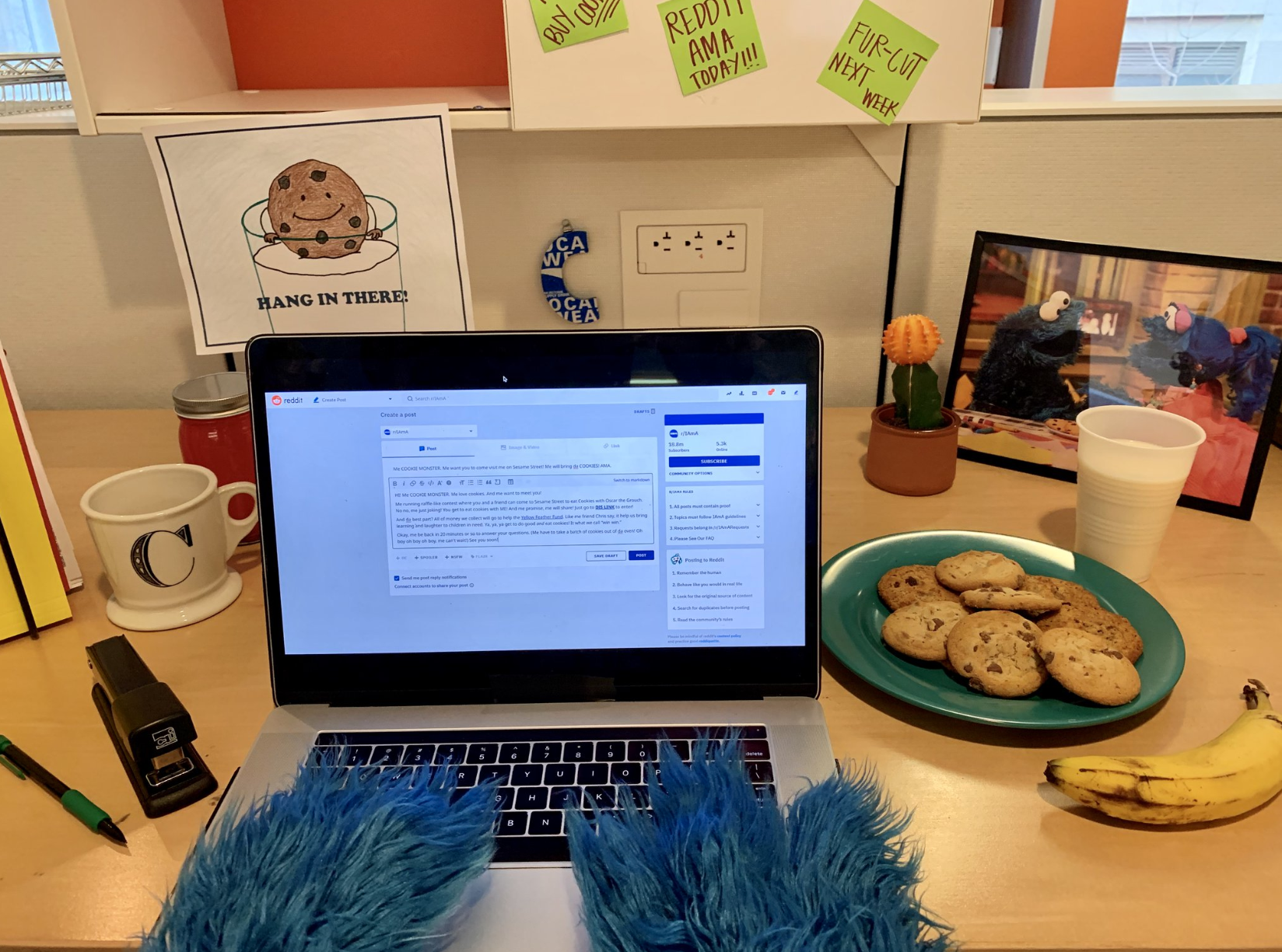 A photo of Cookie Monster at his computer keyboard.