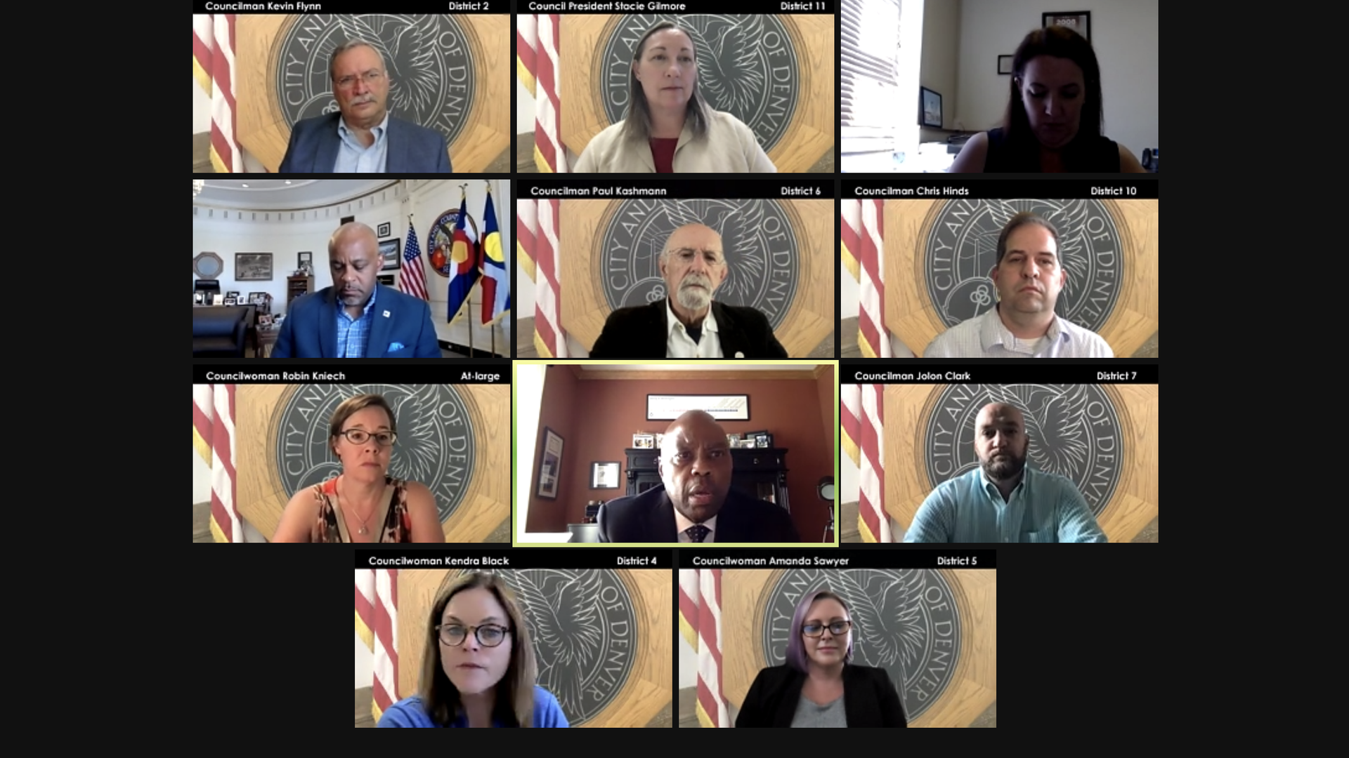 A Zoom screen of the council committee members