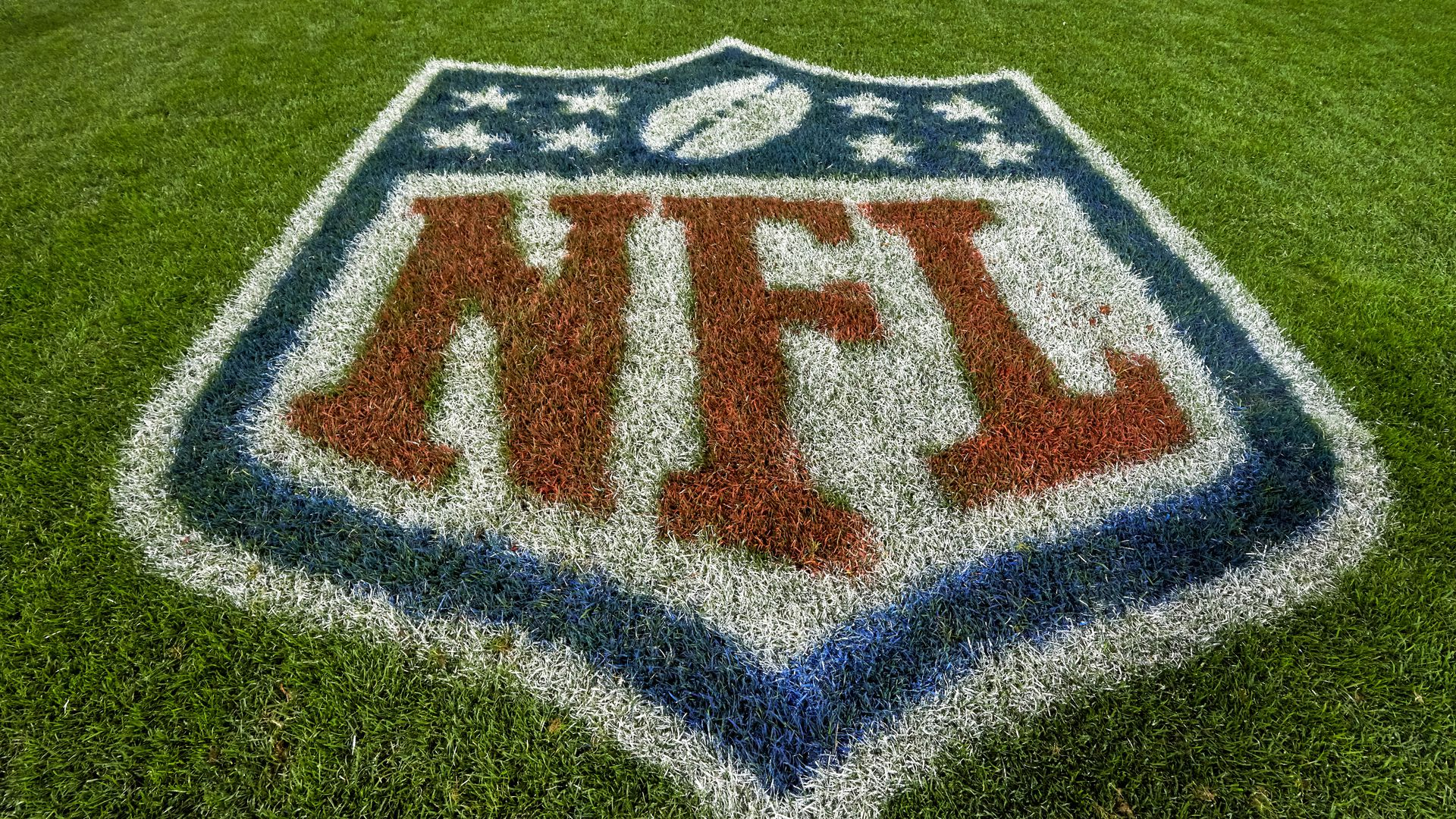 The NFL's logo