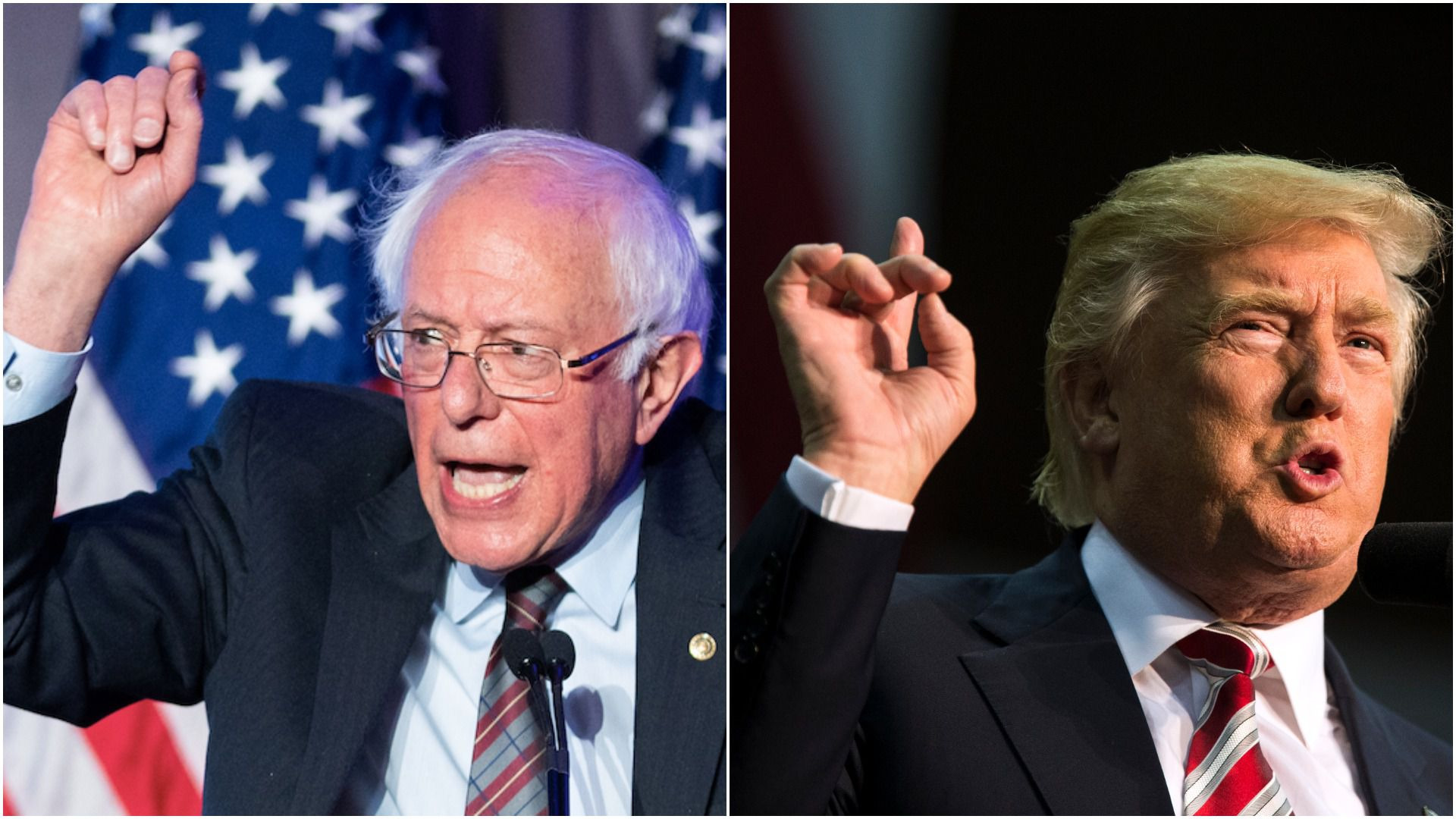 A split photo featuring Sanders and Trump at rallies