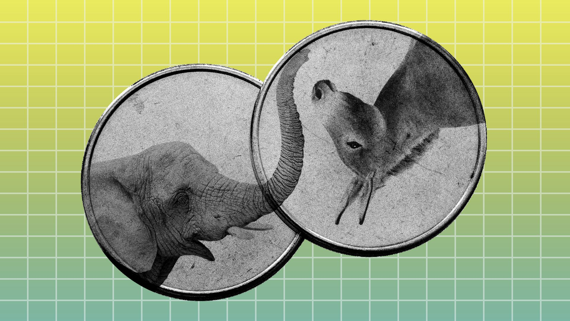 Two coins with an elephant and a donkey on each one