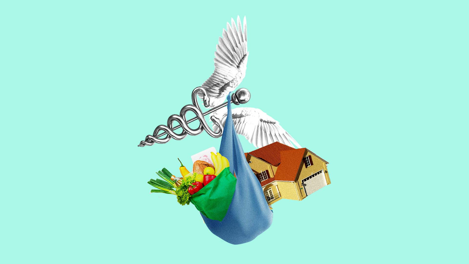 Illustration of flying caduceus carrying sack of groceries and a house