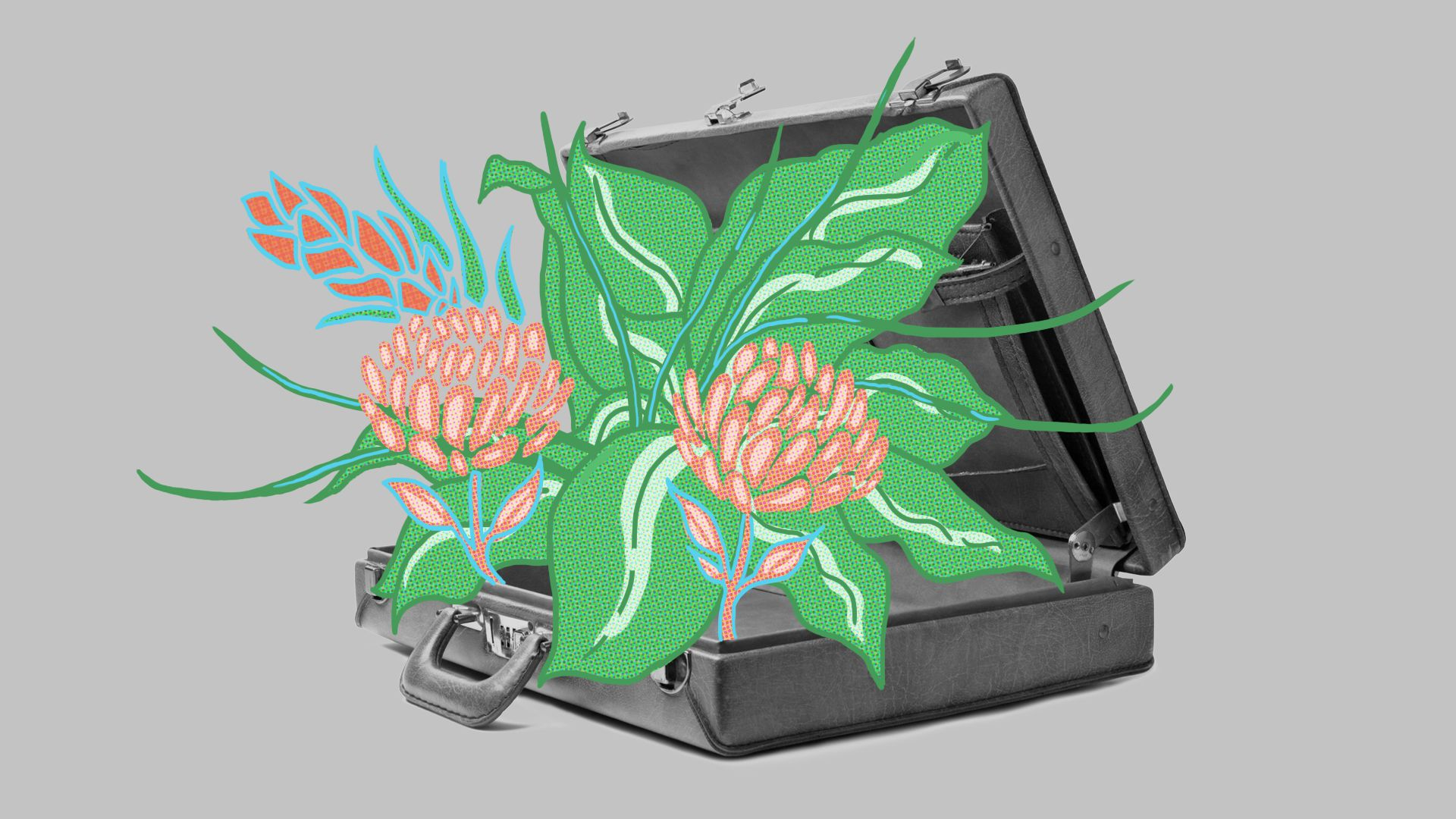 flowers and plants coming out of a briefcase