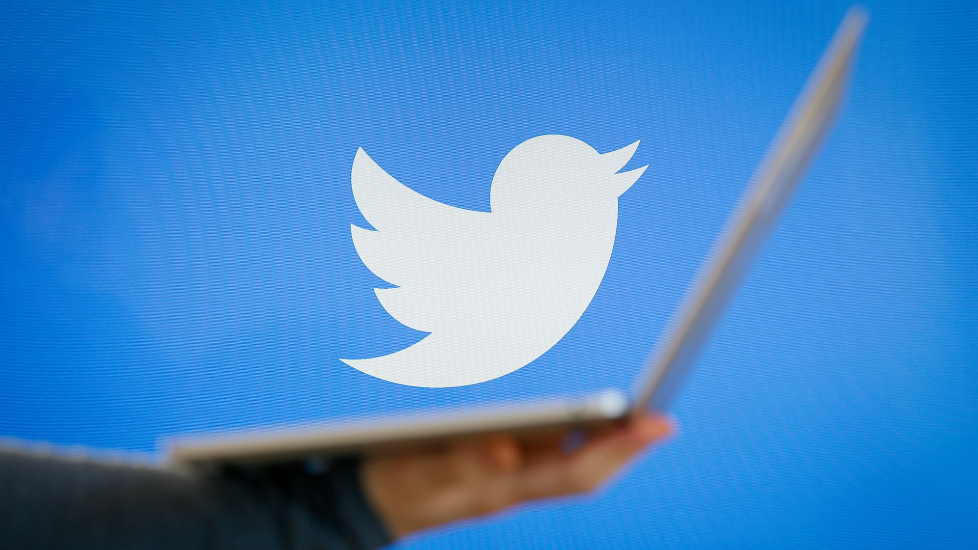 A Twitter logo bird in white on blue background, with an open laptop in front.
