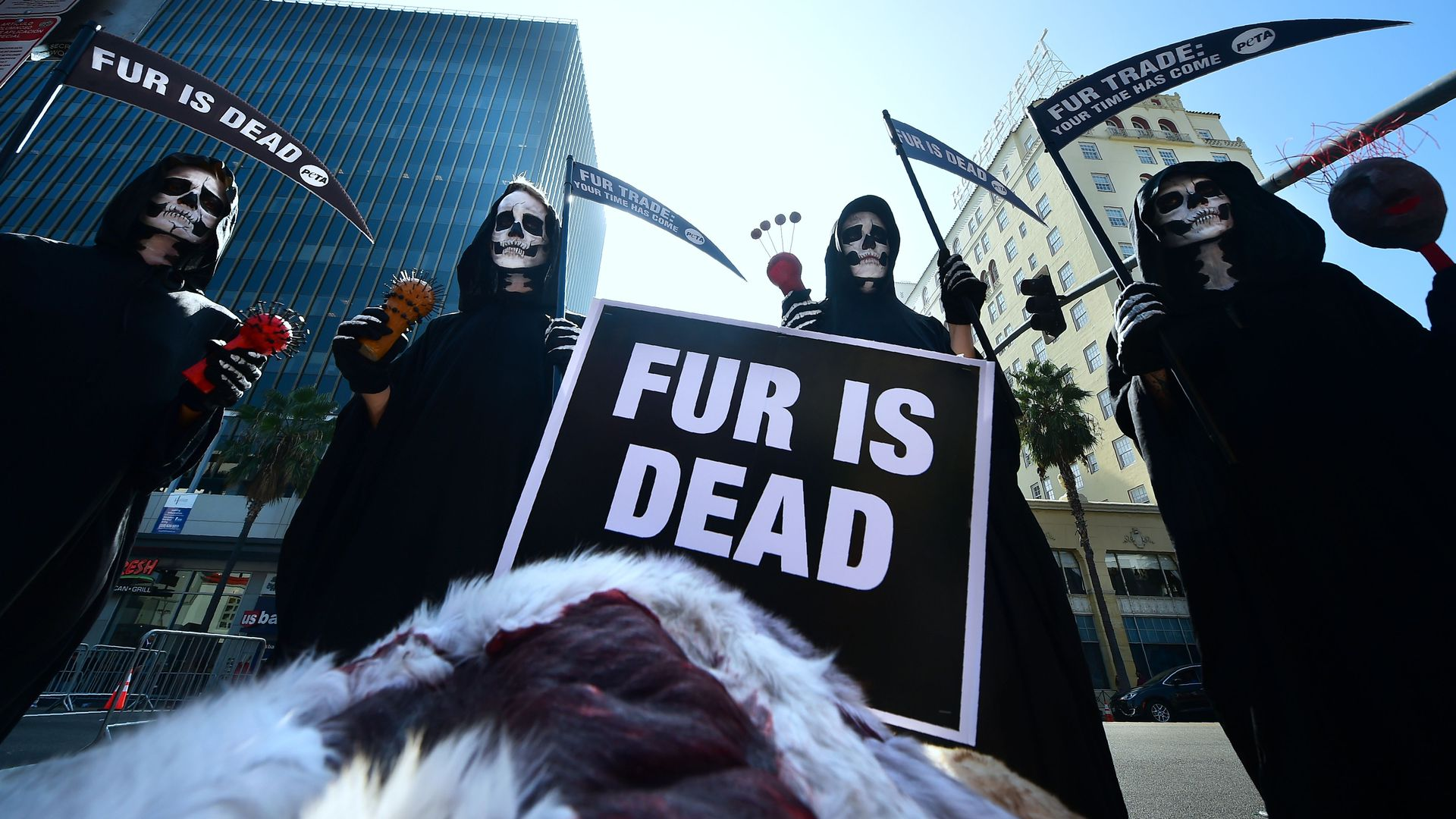 Black-robed PETA activists dressed as Grim Reapers hold a 'Fur is Dead' rally along Hollywood Boulevard on October 25, 2018 in Hollywood, California