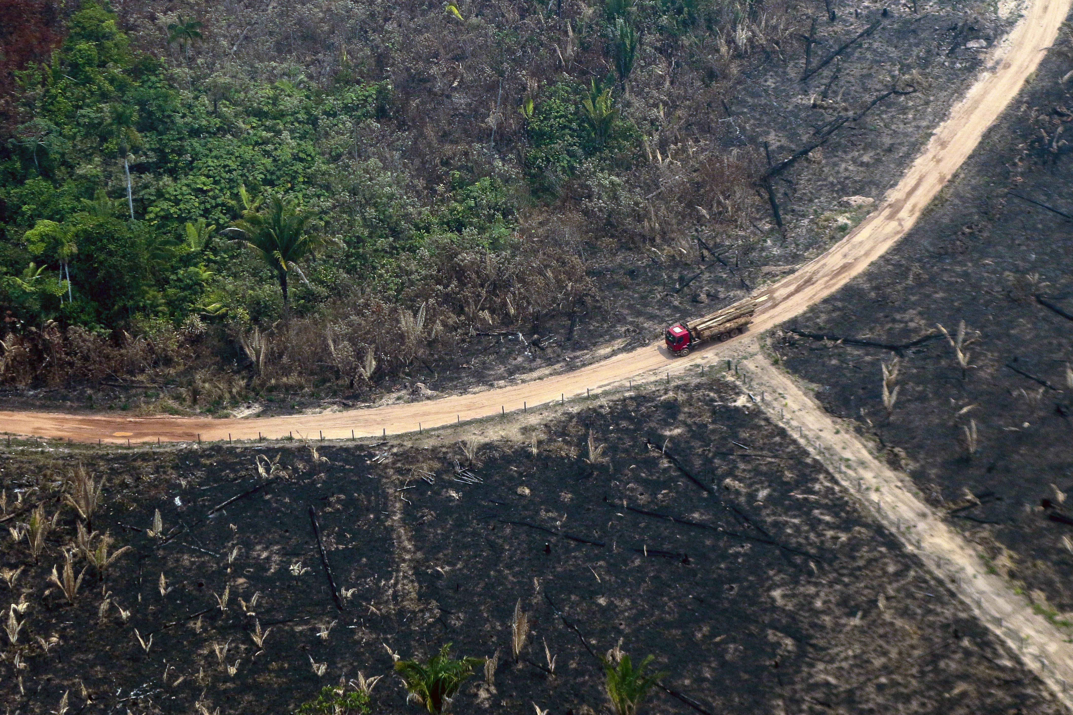 Amazon fires: Impact on rainforest in and around Brazil — in