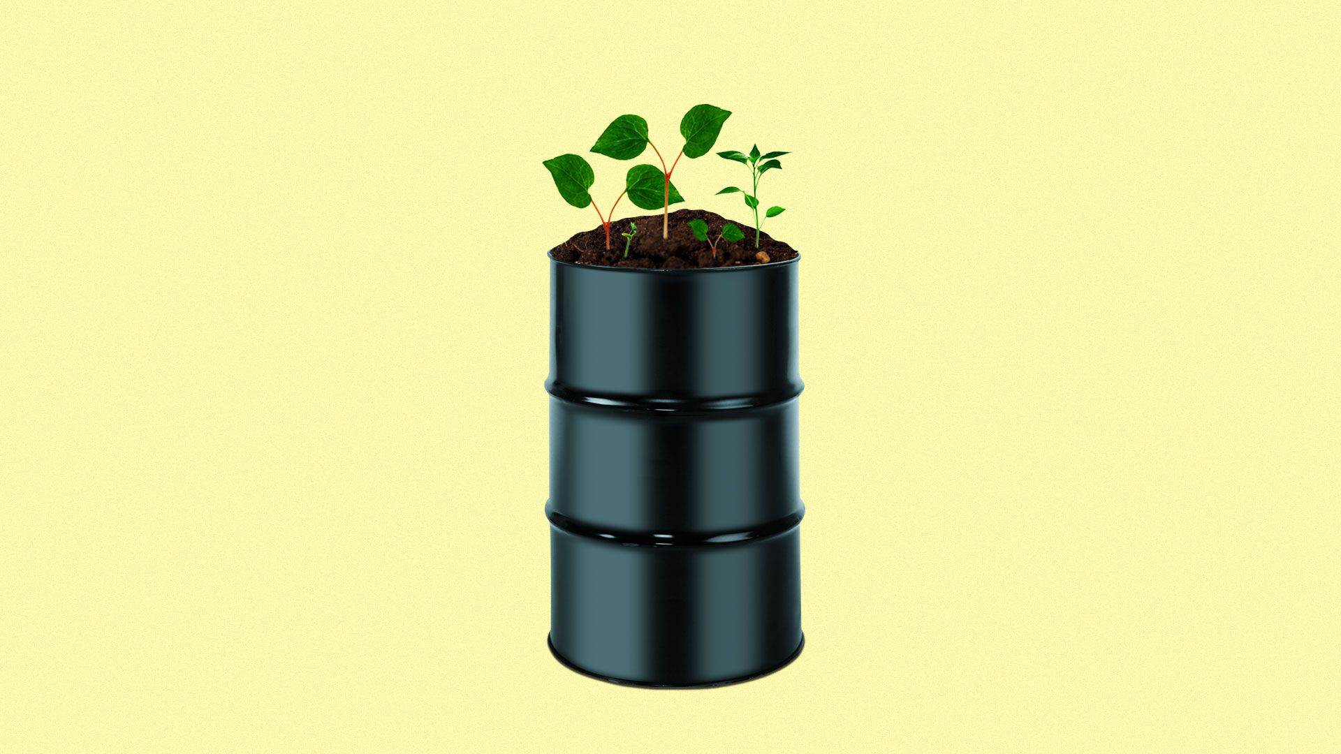Illustration of oil barrel with plants growing on top of lid.