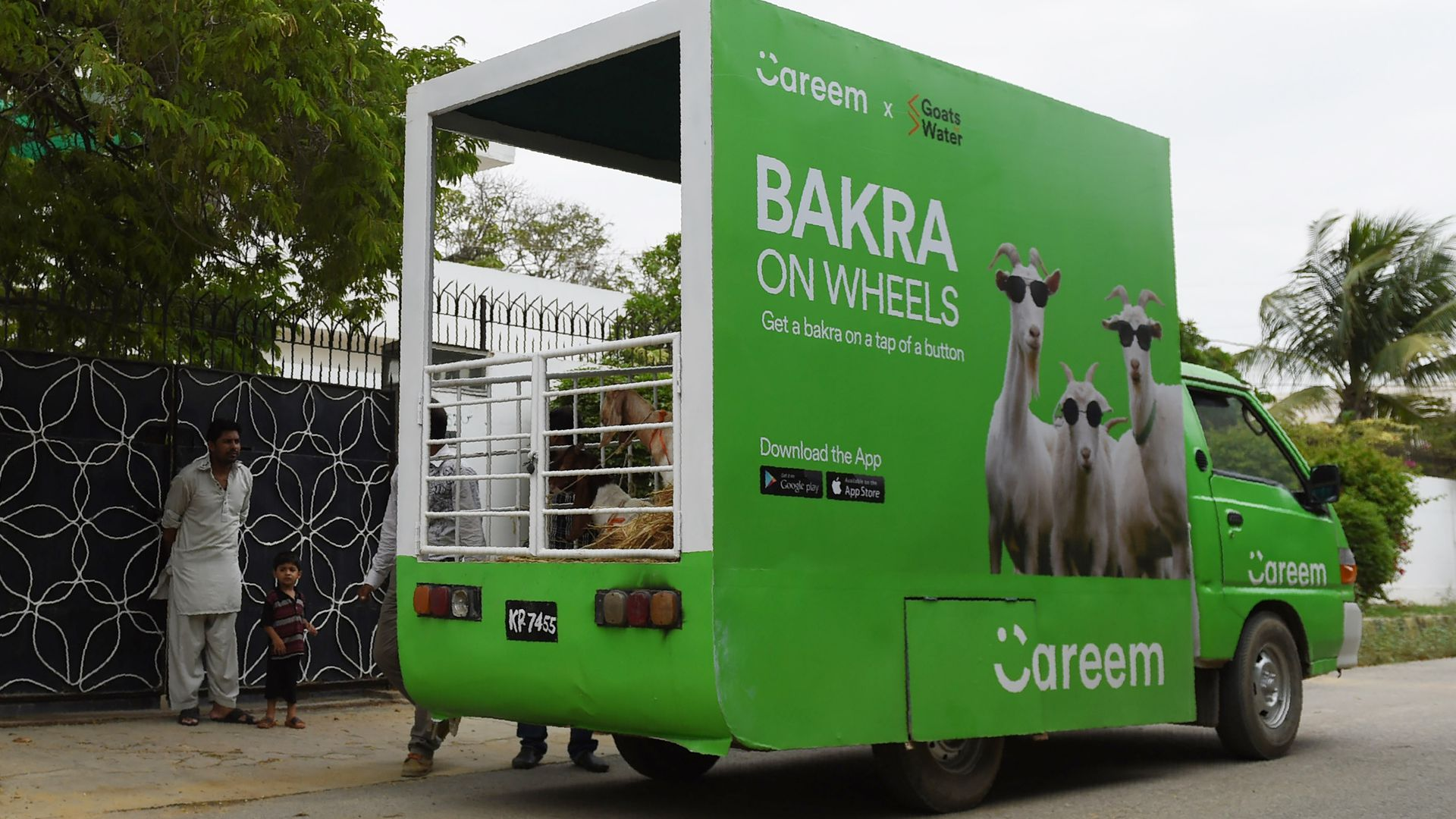 Careem's service 'Bakra on wheels' transports goats in a green truck