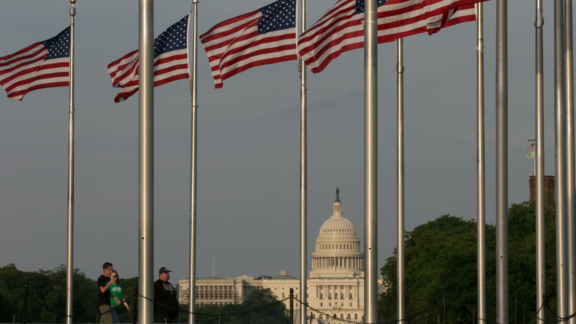 American flags on poles in a circle, with the Capitol Dome in the background