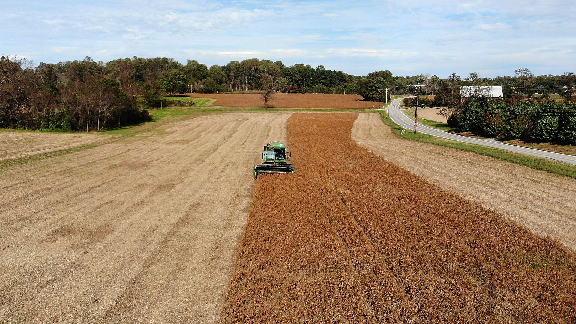 Tractor harvesting soybeans