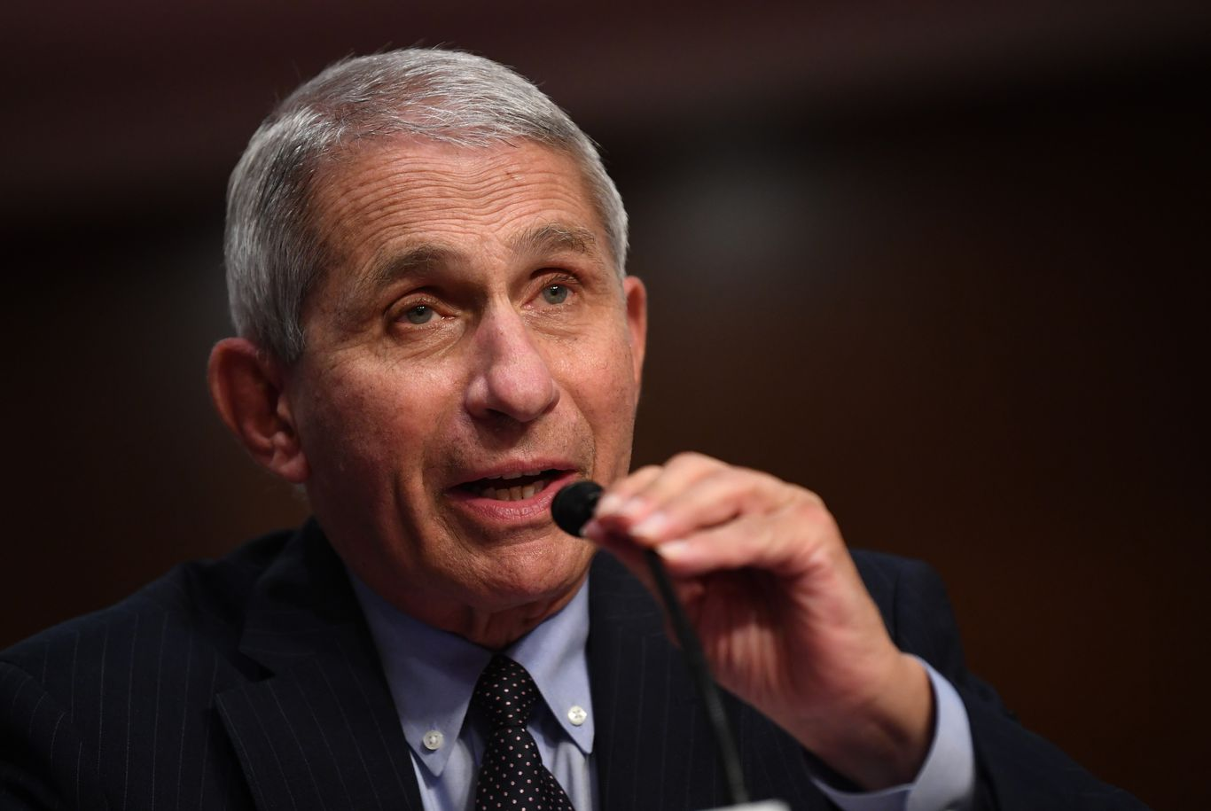"""Fauci: States with severe coronavirus outbreaks """"should seriously look at shutting down"""""""