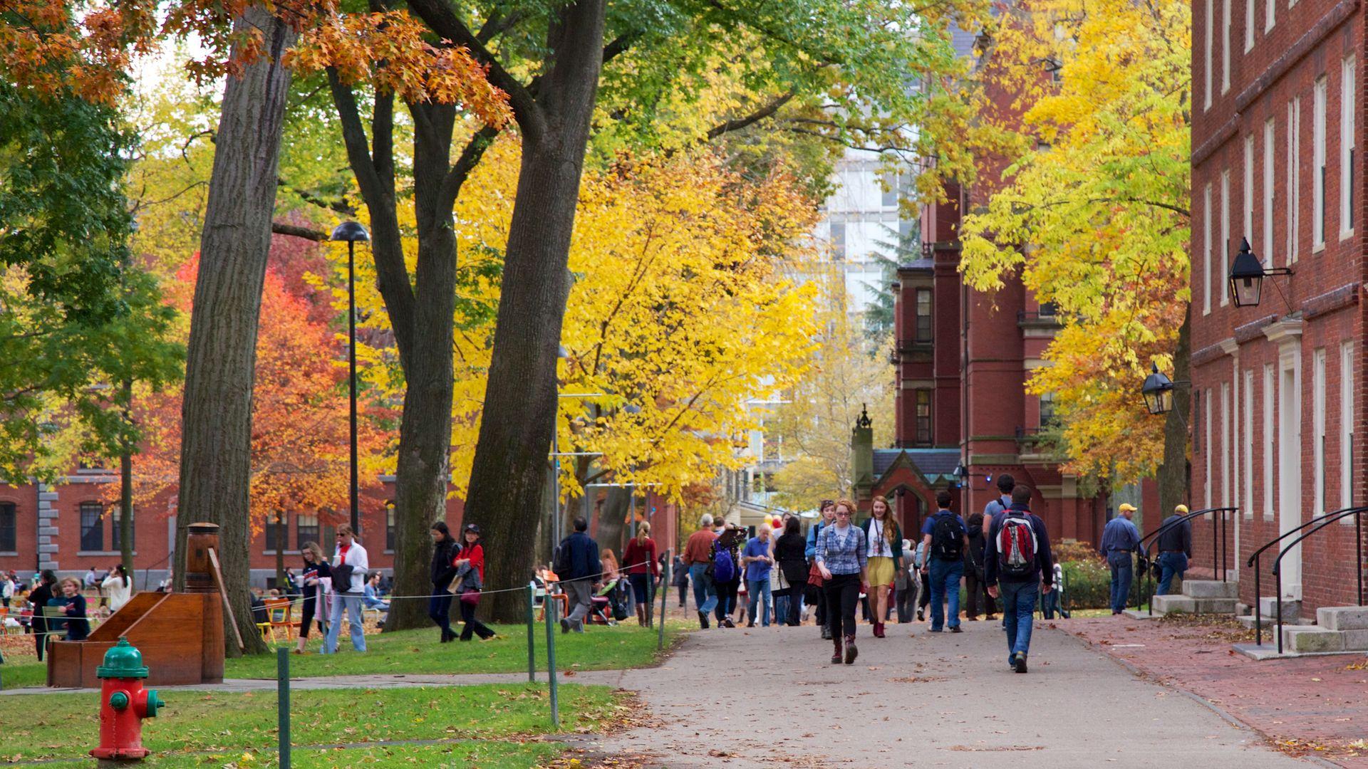 Harvard Yard, old heart of Harvard University campus.