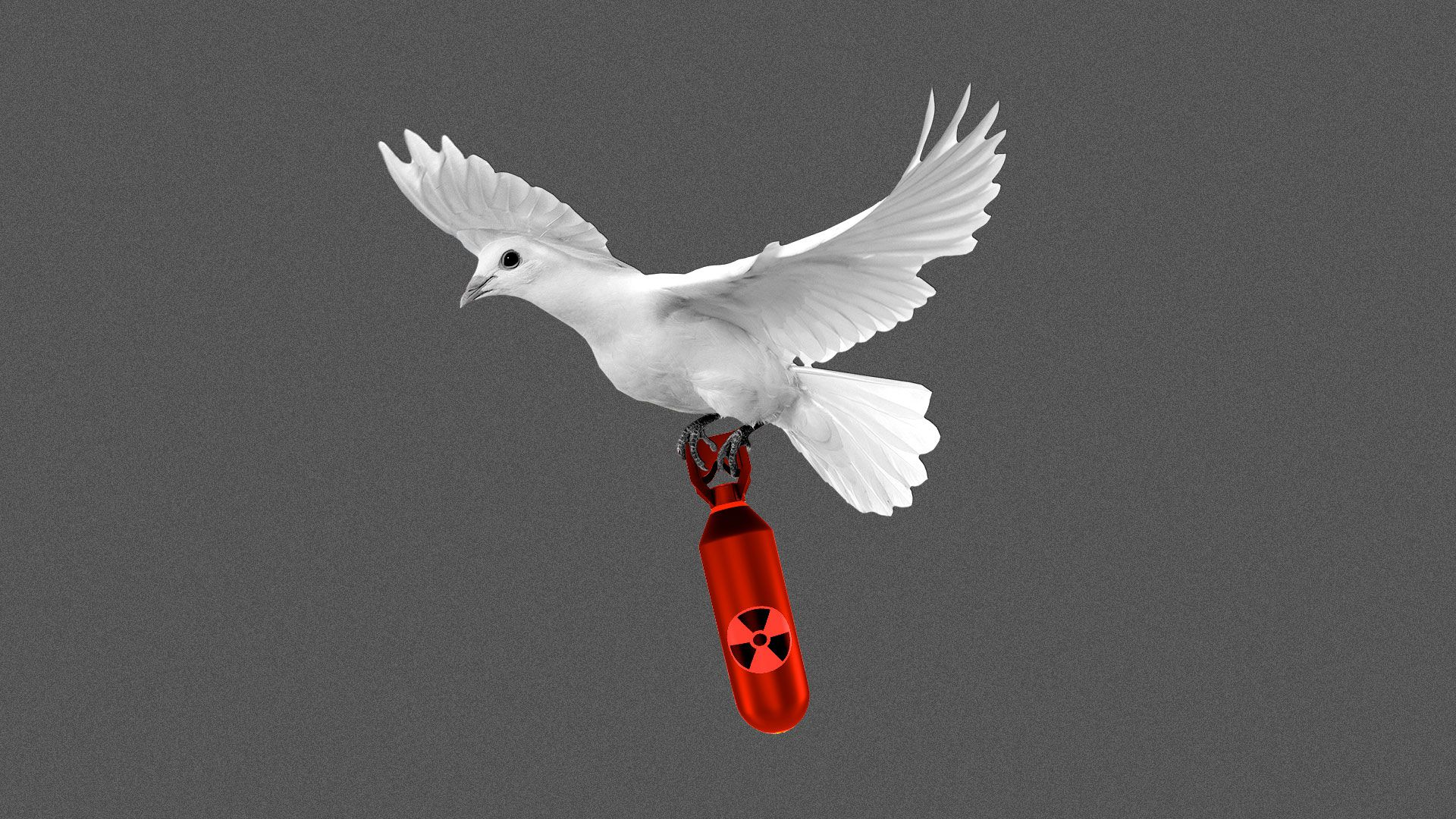 Illustration of a white dove carrying a nuclear bomb.