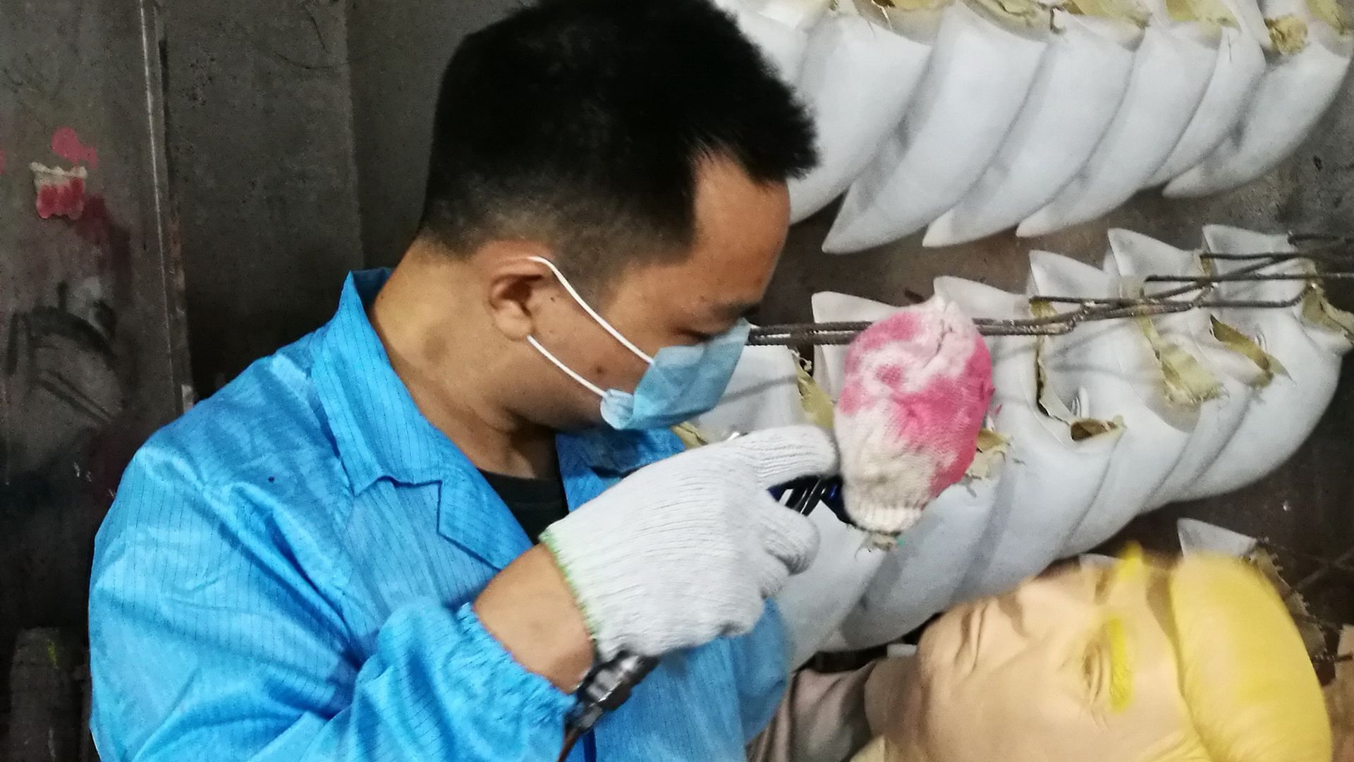 An employee paints a mask of American president-elect Donald Trump at a latex crafts factory on November 9, 2016 in Shenzhen, Guangdong Province of China.