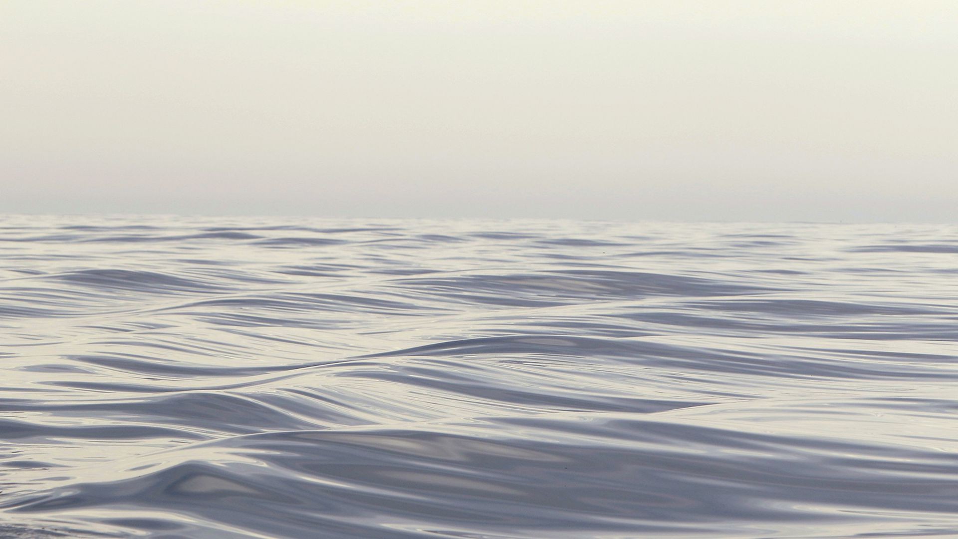 Waves in the Bay of Fundy