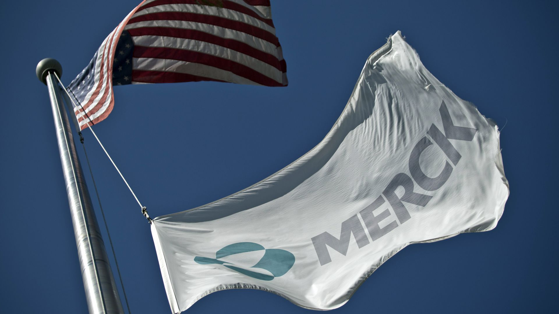 A Merck flag flies underneath the American flag.