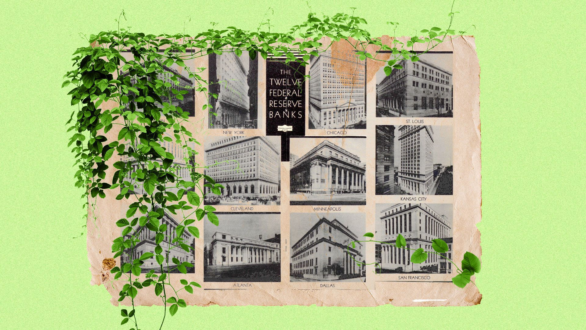 Illustrated collage of a historical image of the federal reserve banks with greenery.