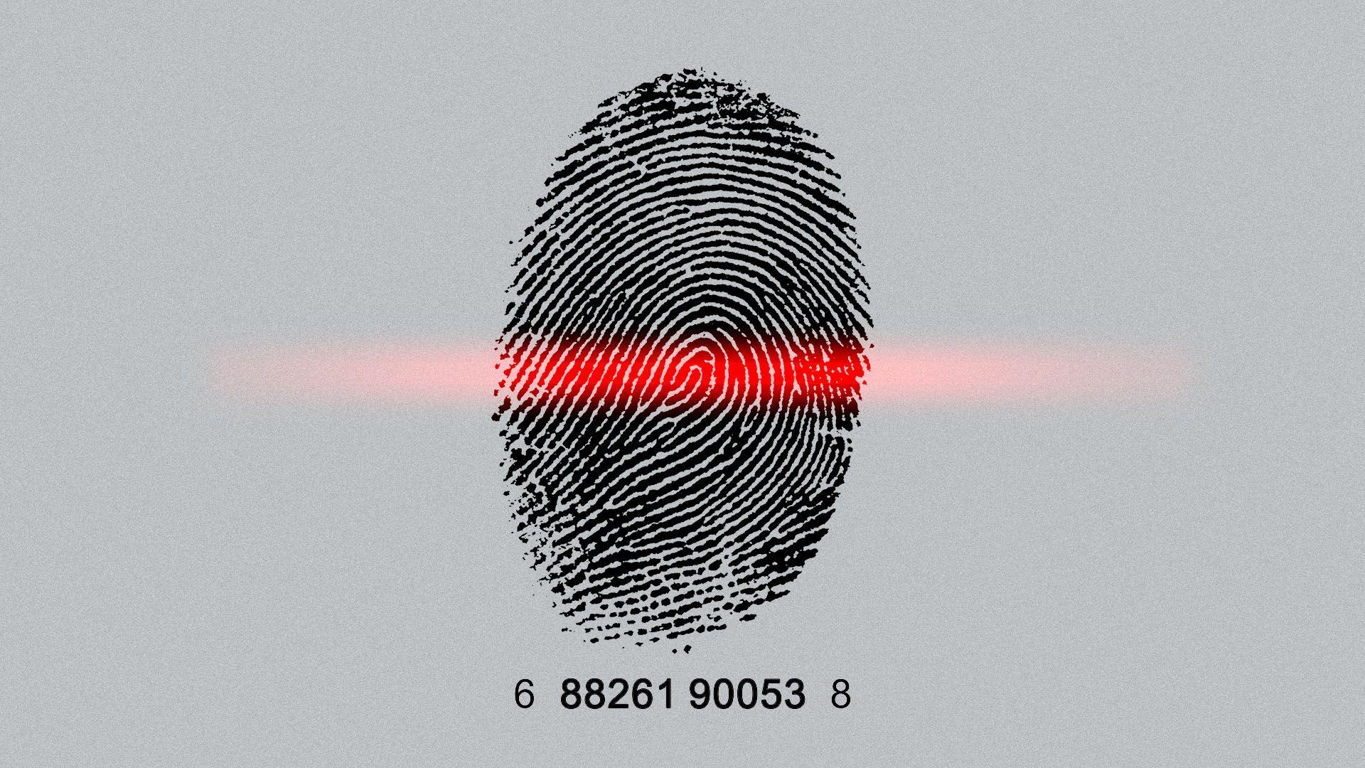 Illustration of a fingerprint as a barcode