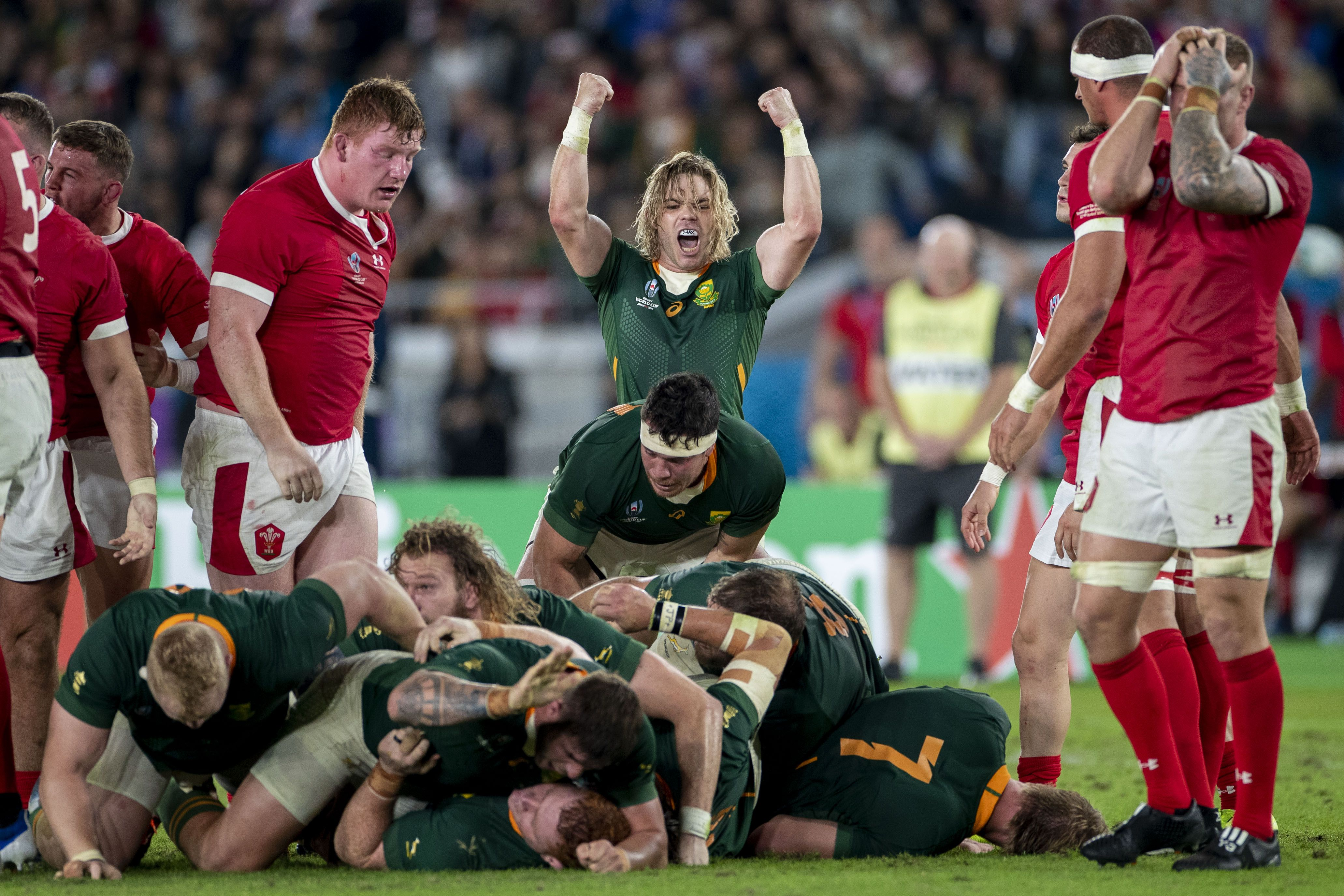 South Africa vs. Wales rugby