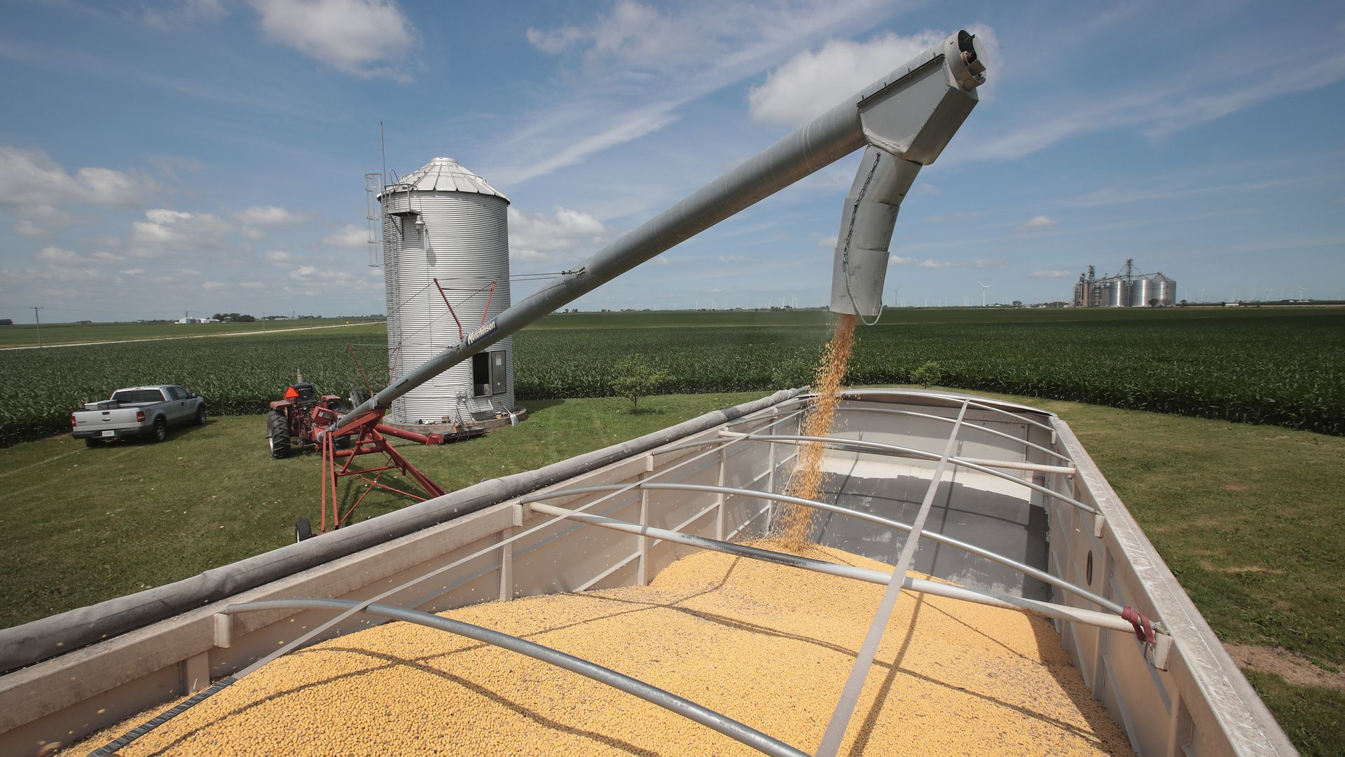 Soybeans in a truck