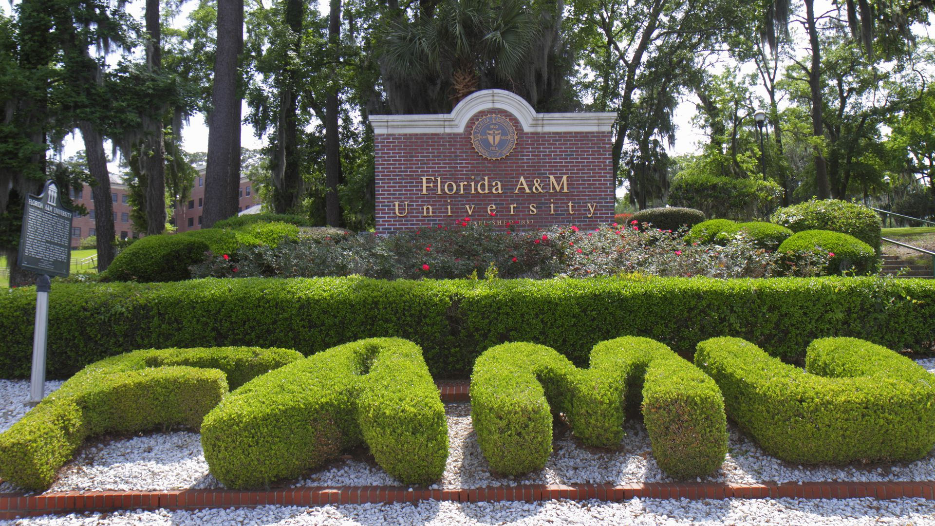 """F A M U"" spelled out in bushes"
