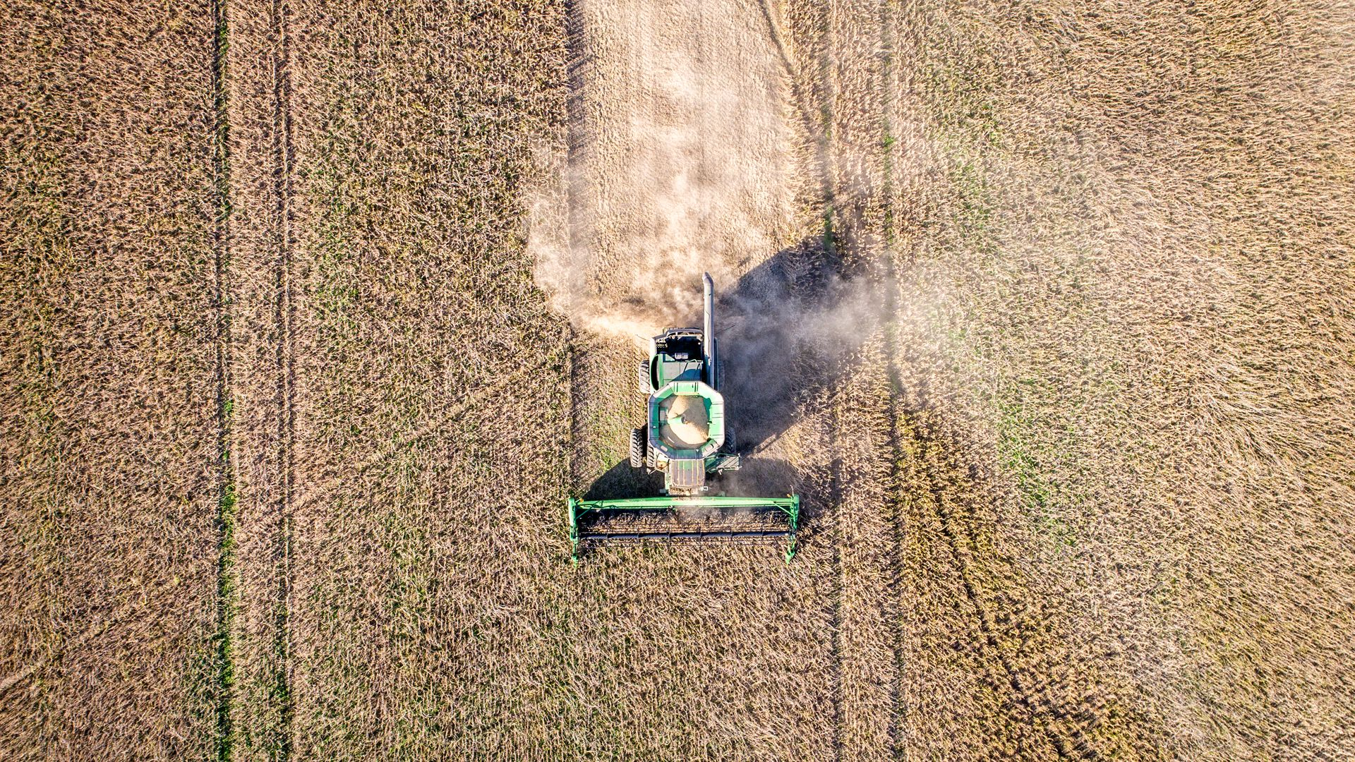 Aerial view looking directly down at a combine harvester driving through rows of soybeans and kicking up dust, Maryland. (Photo by: Edwin Remsberg / VWPics/Universal Images Group via Getty Images)