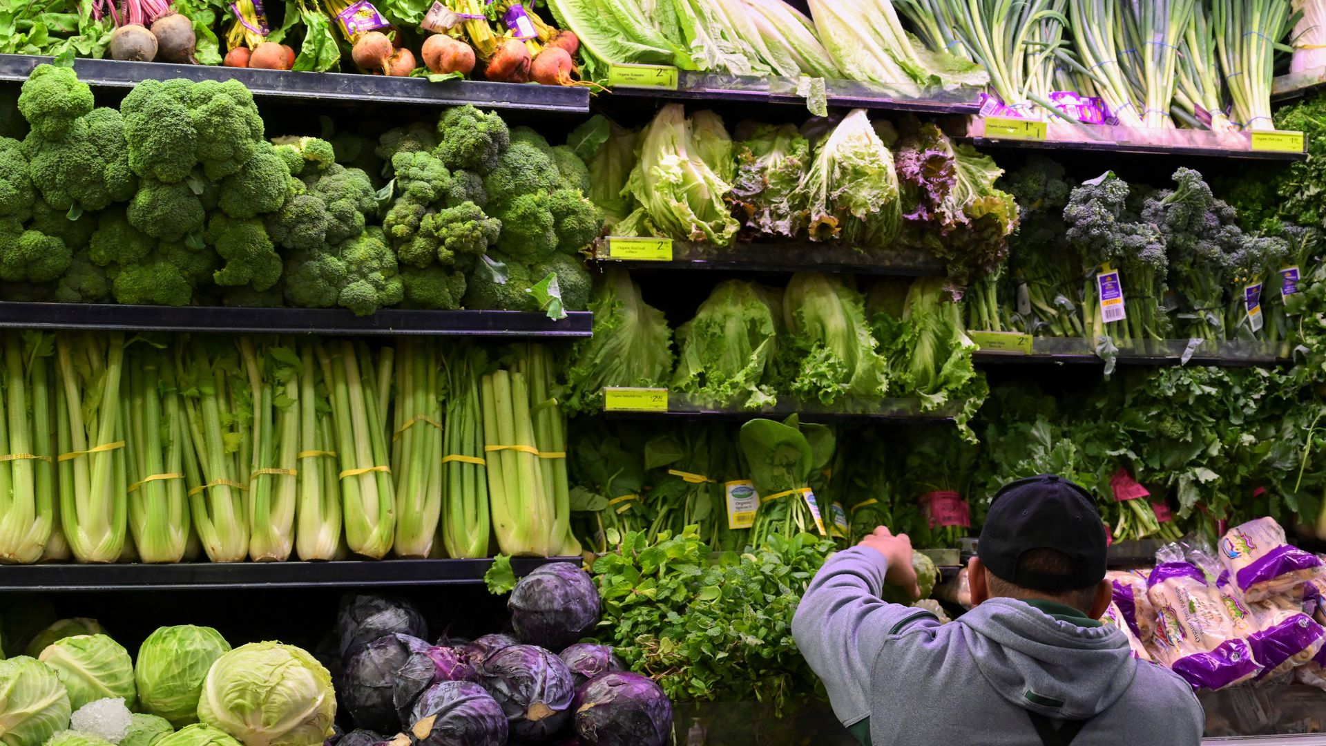 Romaine lettuce and vegetables displayed in store.