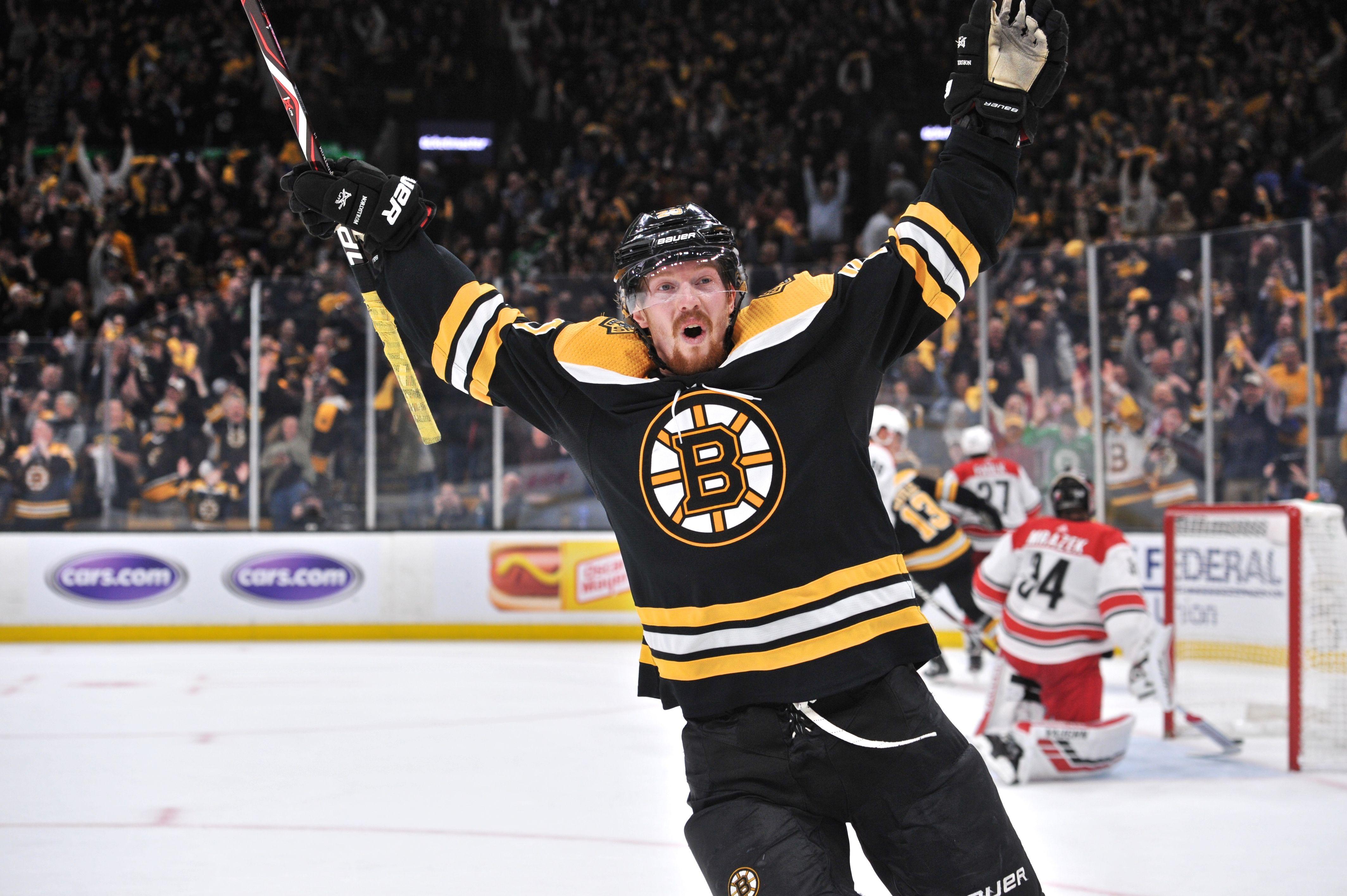 Bruins celebrate a goal