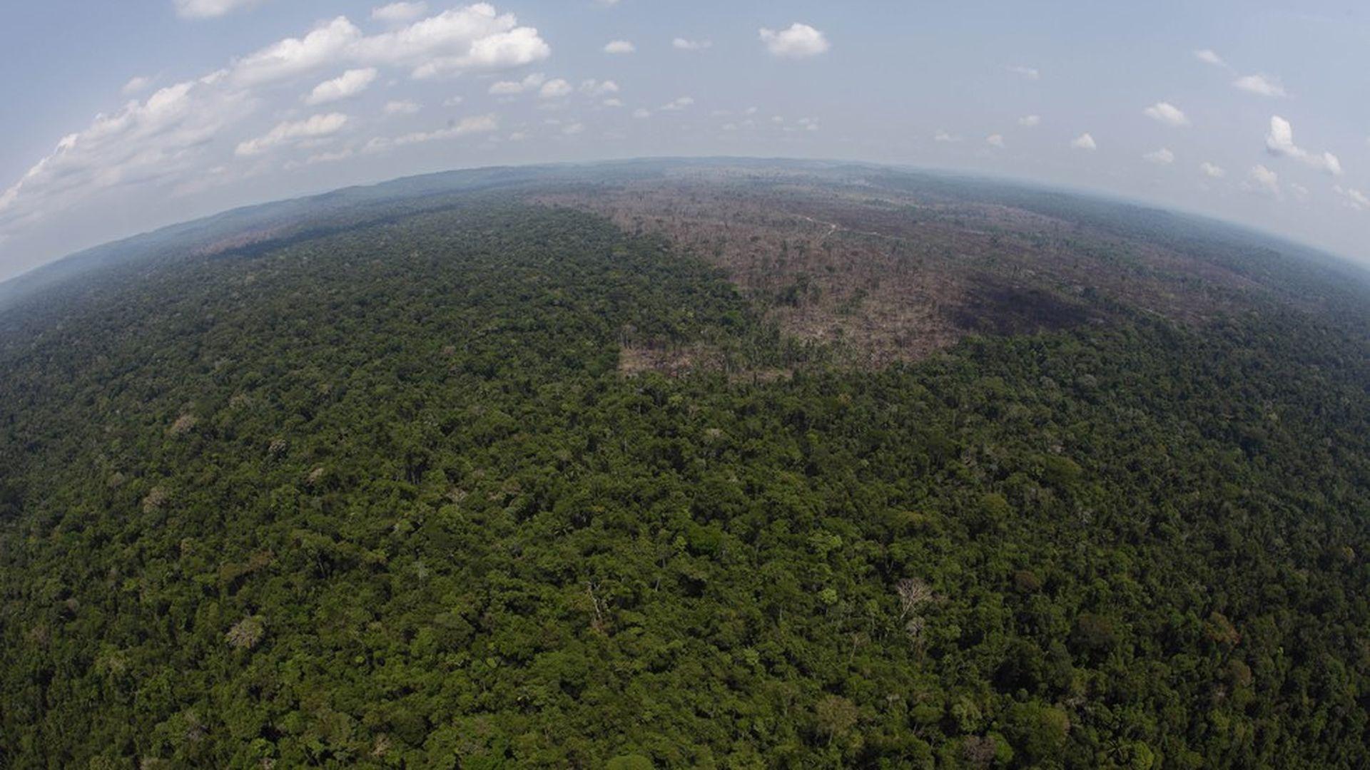 The Amazon's trees can make it rain